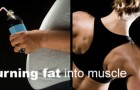 How To Burn Fat + Build Lean Muscle in Massillon