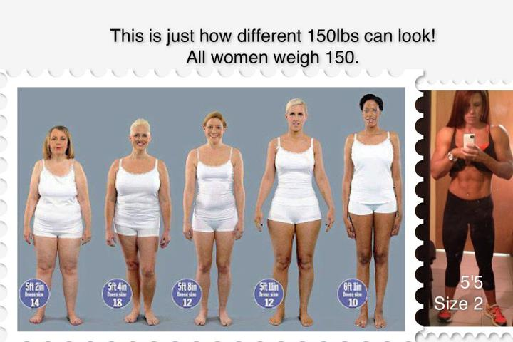 I am 5 foot 4 inches. As of this morning I am and I wear a size 8 or 10 depends on the brand. I have bigger hips and thighs so the 10's are to big in the waist and still a right in the hips and thighs.